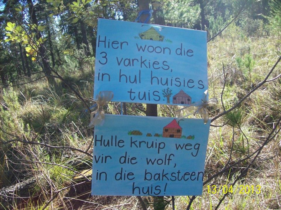 Forest Picnic / Bos Piekniek